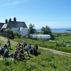 bardsey collage - picnic